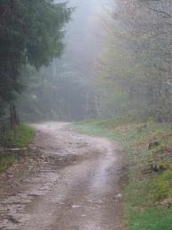 Chemin de Saint Jacques,France,2013